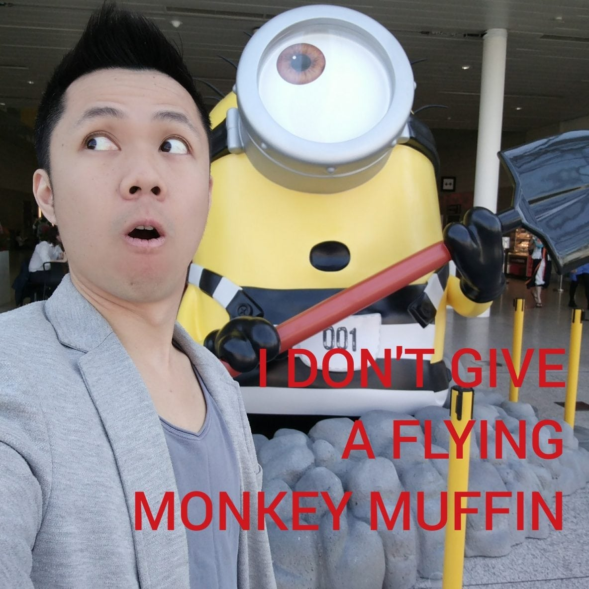 I Don't Give a Flying Monkey Muffin